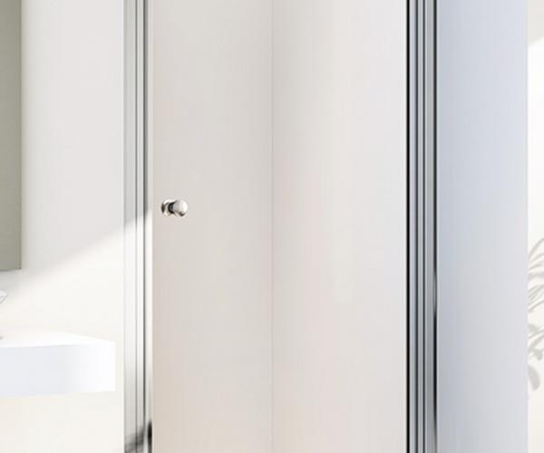 душевая дверь RADOMIR 90