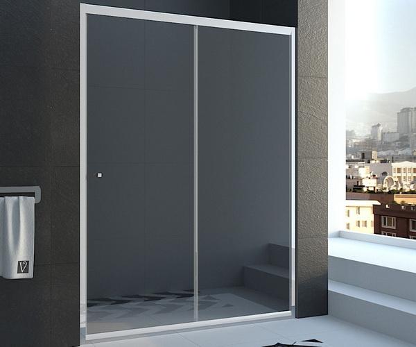 душевая дверь VECONI VN-55 120